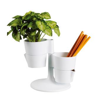 oasso 植物盆栽多功能花台笔筒