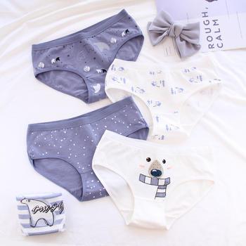 GREAT 5条装 北极熊印花女士棉内裤